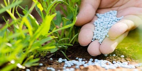 Controlled-Release Compound Fertilizer Market Insights | Size ...